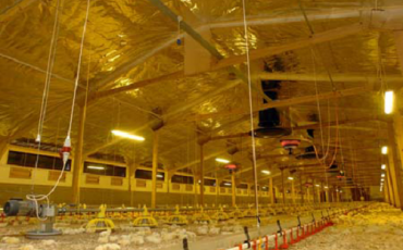 Radiant barrier benefits now spanning the globe
